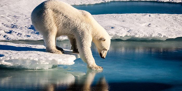 Foro España con la defensa del cambio climático